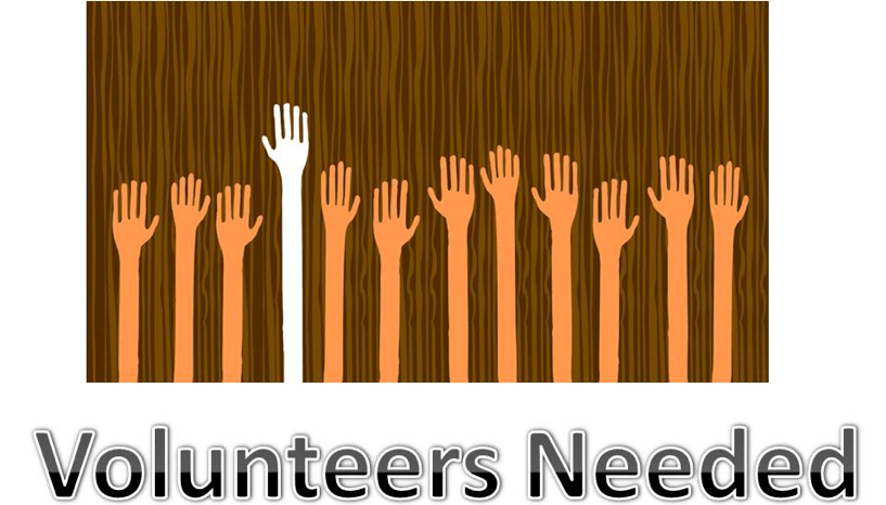 Why You *Should* Pay to Volunteer {Podcast #5}