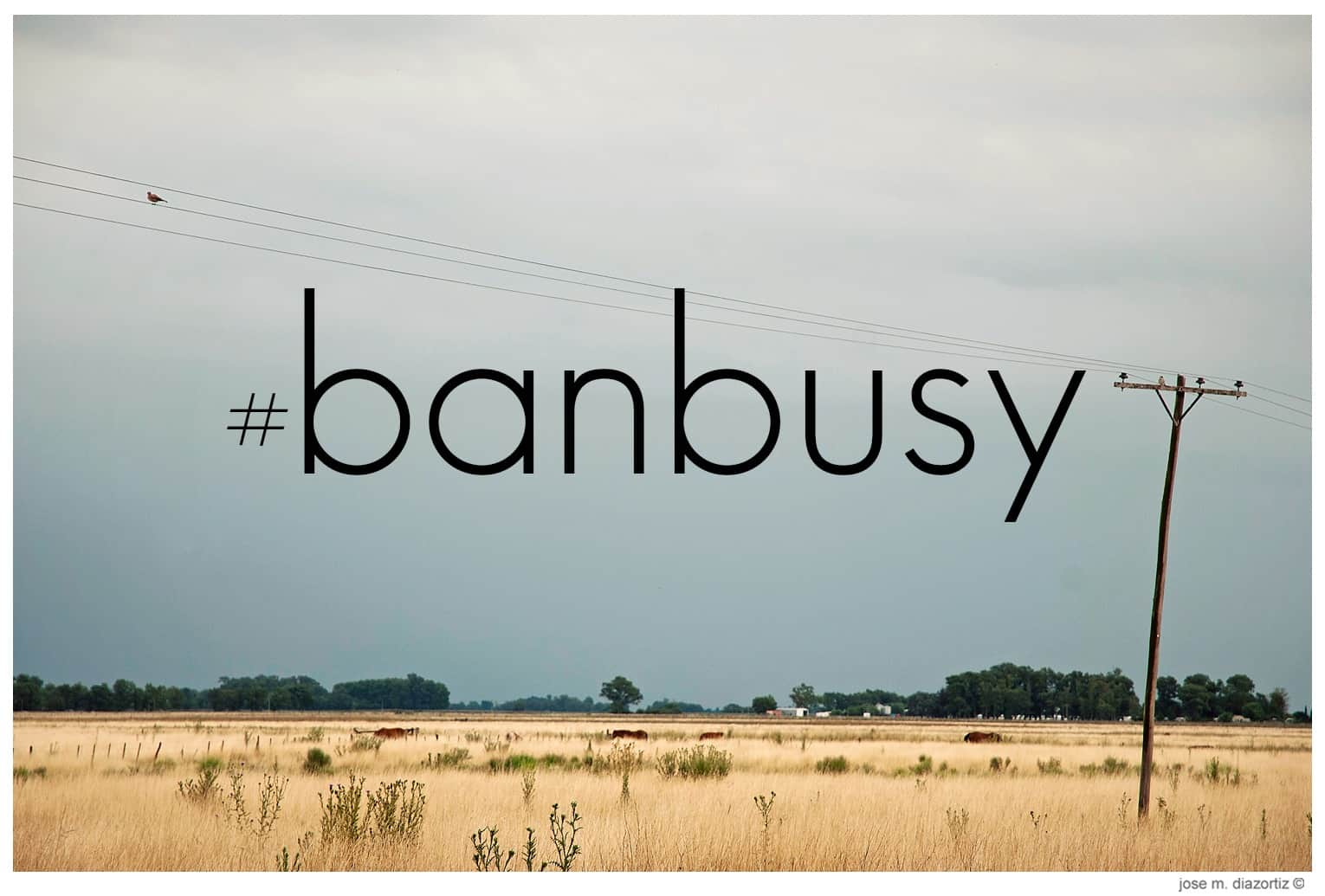 banbusy