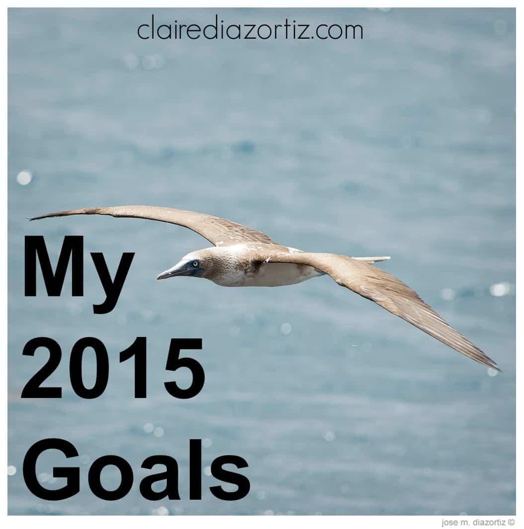 my2015goals